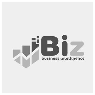 BIZ - Business Intelligence